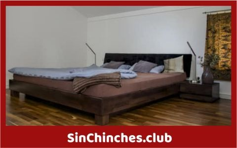 chinches se sienten atraidas por camas de agua