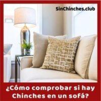 como comprobar si hay chinches en tu sofa