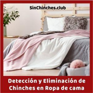 deteccion y eliminacion de chinches en ropa de cama