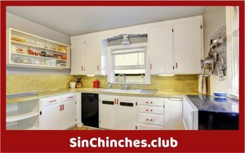 pueden las chinches vivir en armarios de cocina