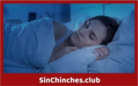 las chinches salen mas por la noche