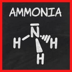 amoníaco es una sustancia química