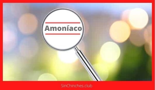 matar chinches con amoníaco