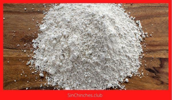 tierra diatomeas es un polvo blanco abrasivo y aspero