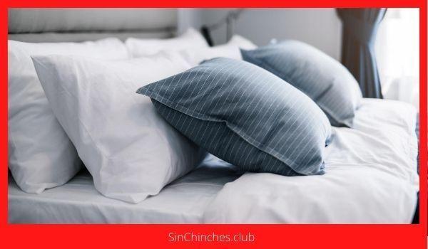 matar chinches en almohadas