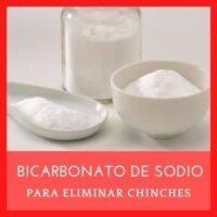 bicarbonato para chinches