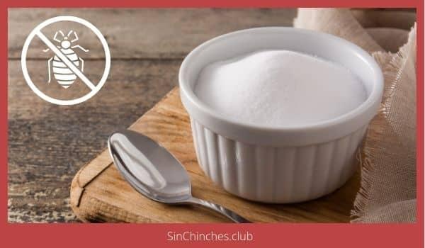 el bicarbonato es bueno para las chinches